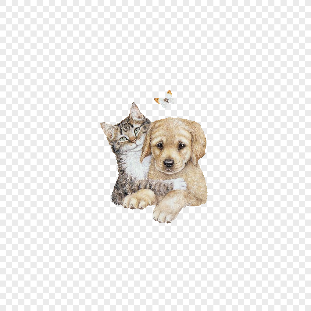 Percuma Gambar Kartun Kucing Tidur Wwwtollebildcom