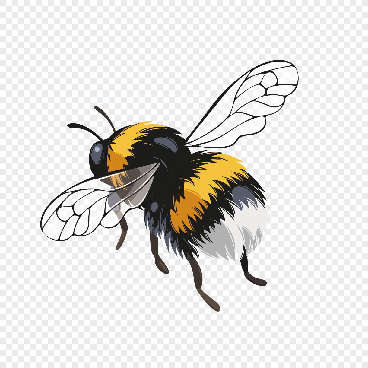 Png Percuma Imej Kartun Lebah Lucu Wwwtollebildcom