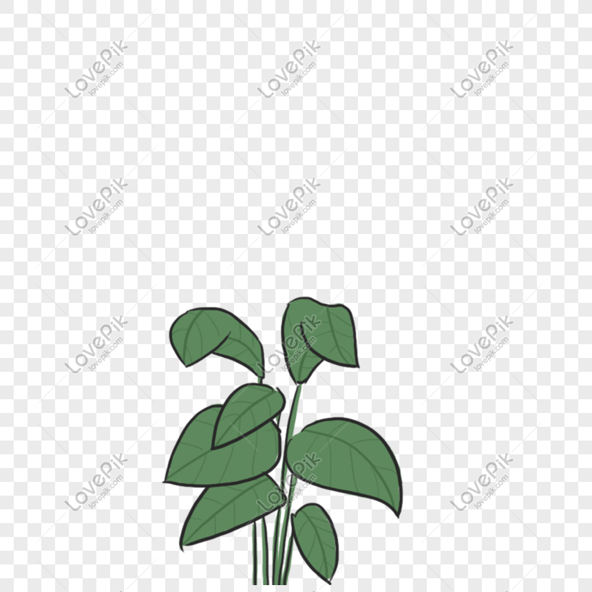 green plant png