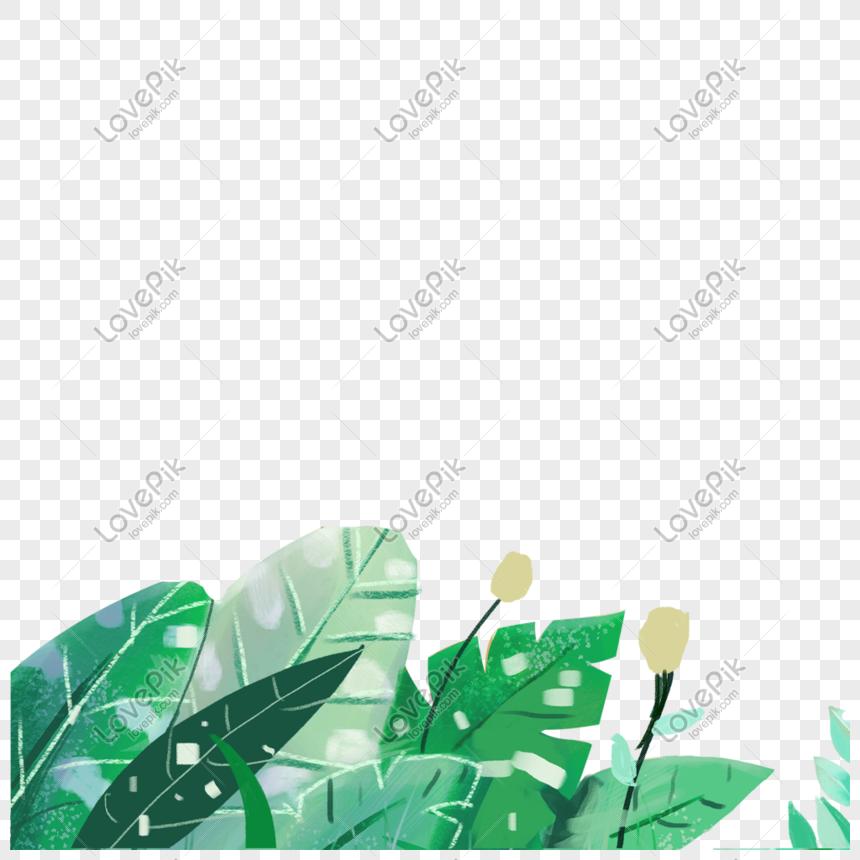 good plants illustration png