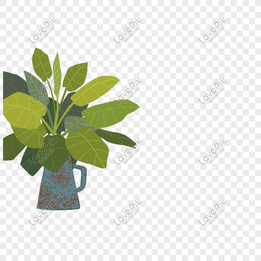 best green plant leaf png