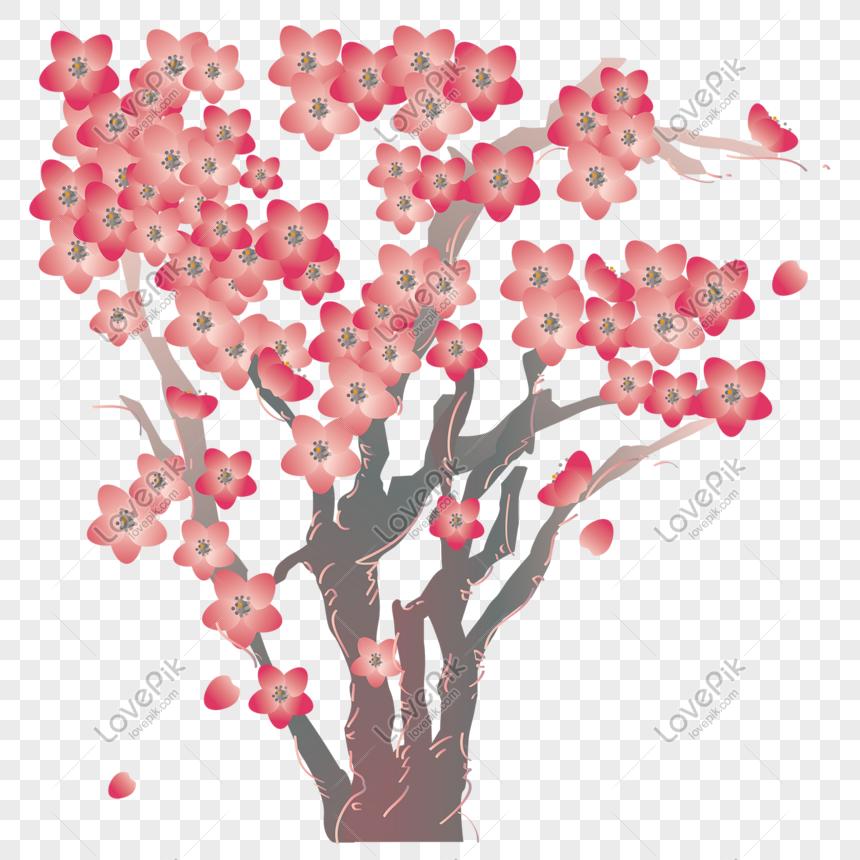 cherry blossom tree romantic cherry blossom festival png