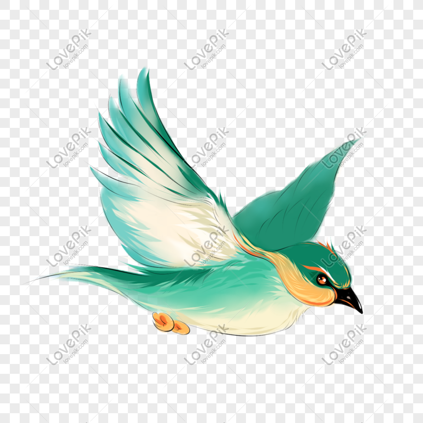 Flying bird png image_picture free download