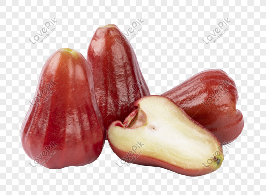 Wax apple fruit png image_picture free download