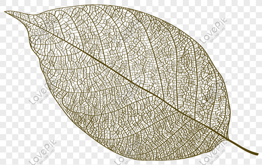 Leaf Texture Material Png Image Picture Free Download 401052389 Lovepik Com