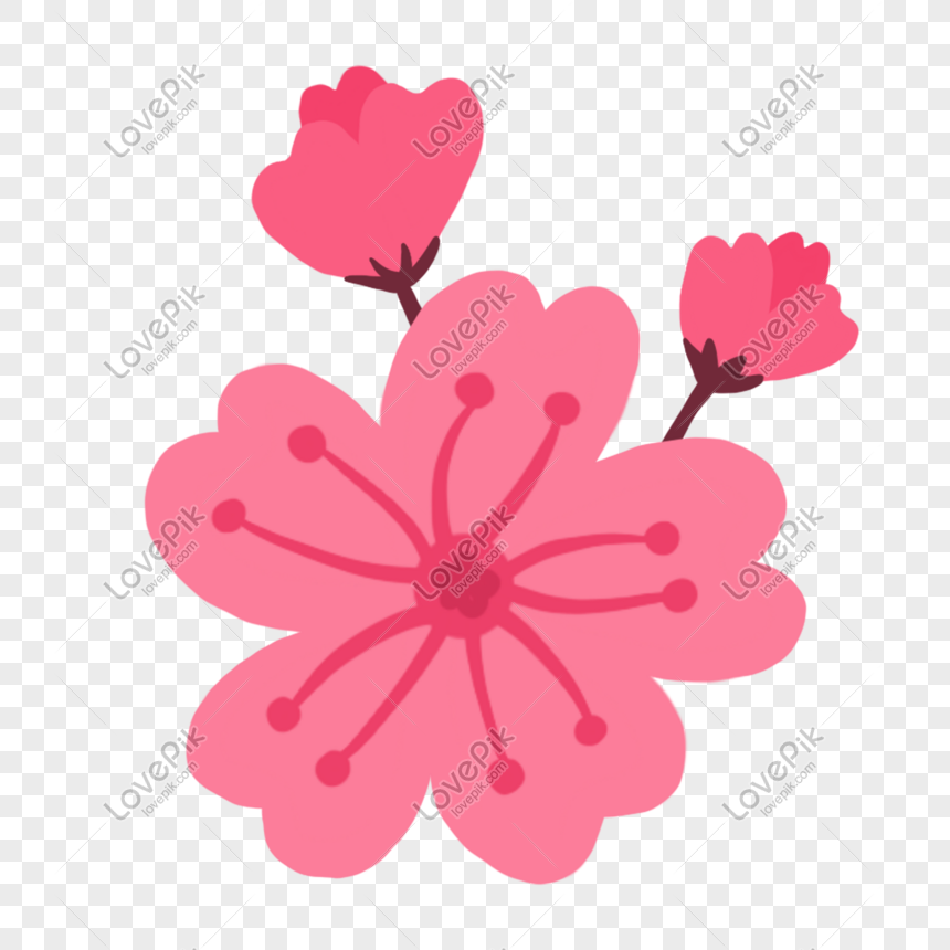 fresh and simple hand painted peach blossoms png