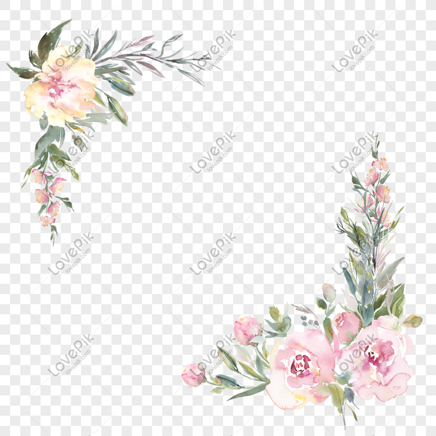 手繪水彩玫瑰 png