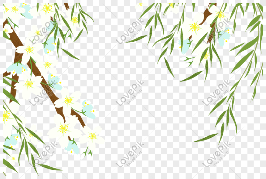 willow willow png