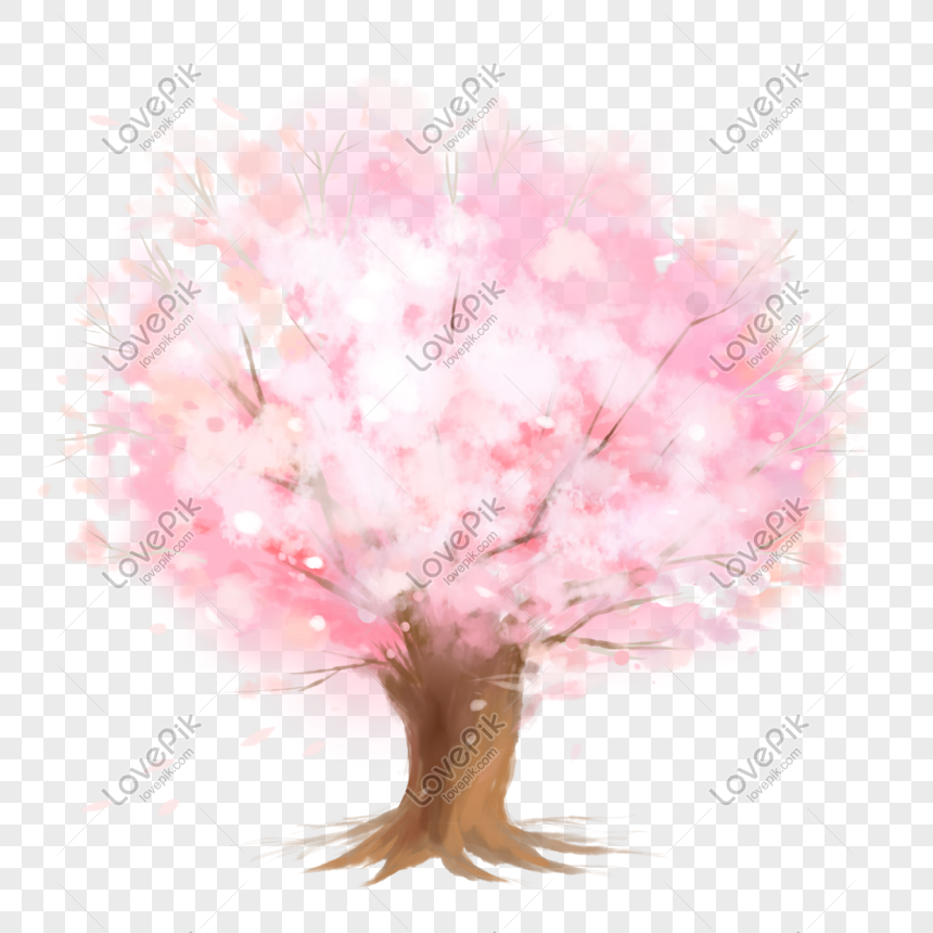 pink is a romantic cherry blossom tree png