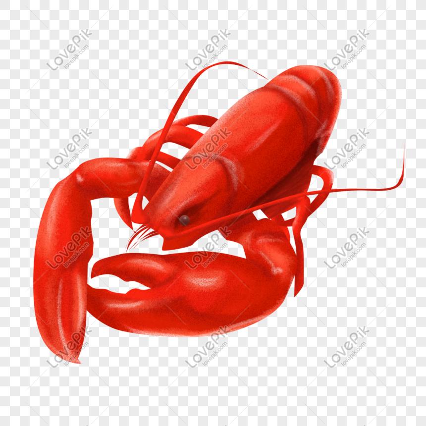 Makanan Laut Merah Lobster Berwarna Merah Gambar Unduh Gratis Imej