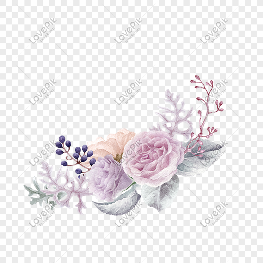 illustration rose png