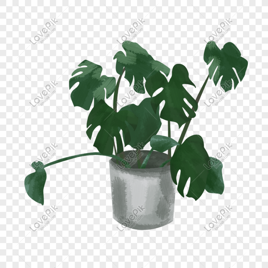 strange green planting elements picture png