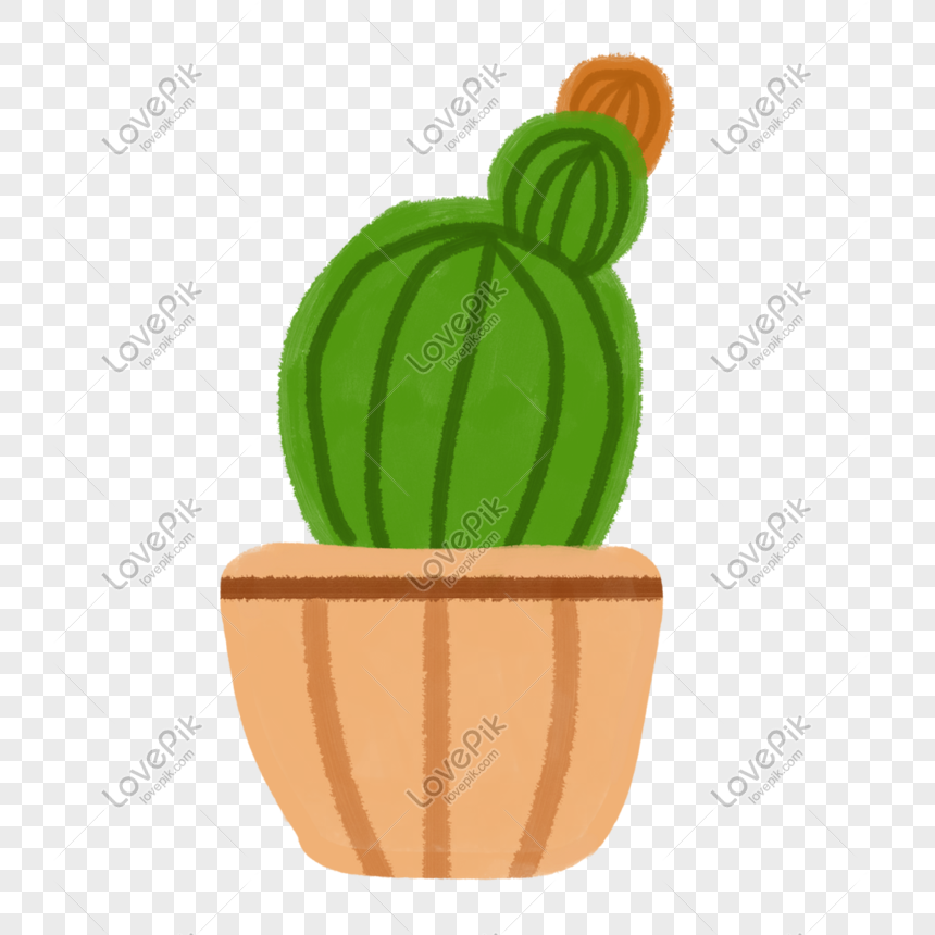 cactus potted plant png