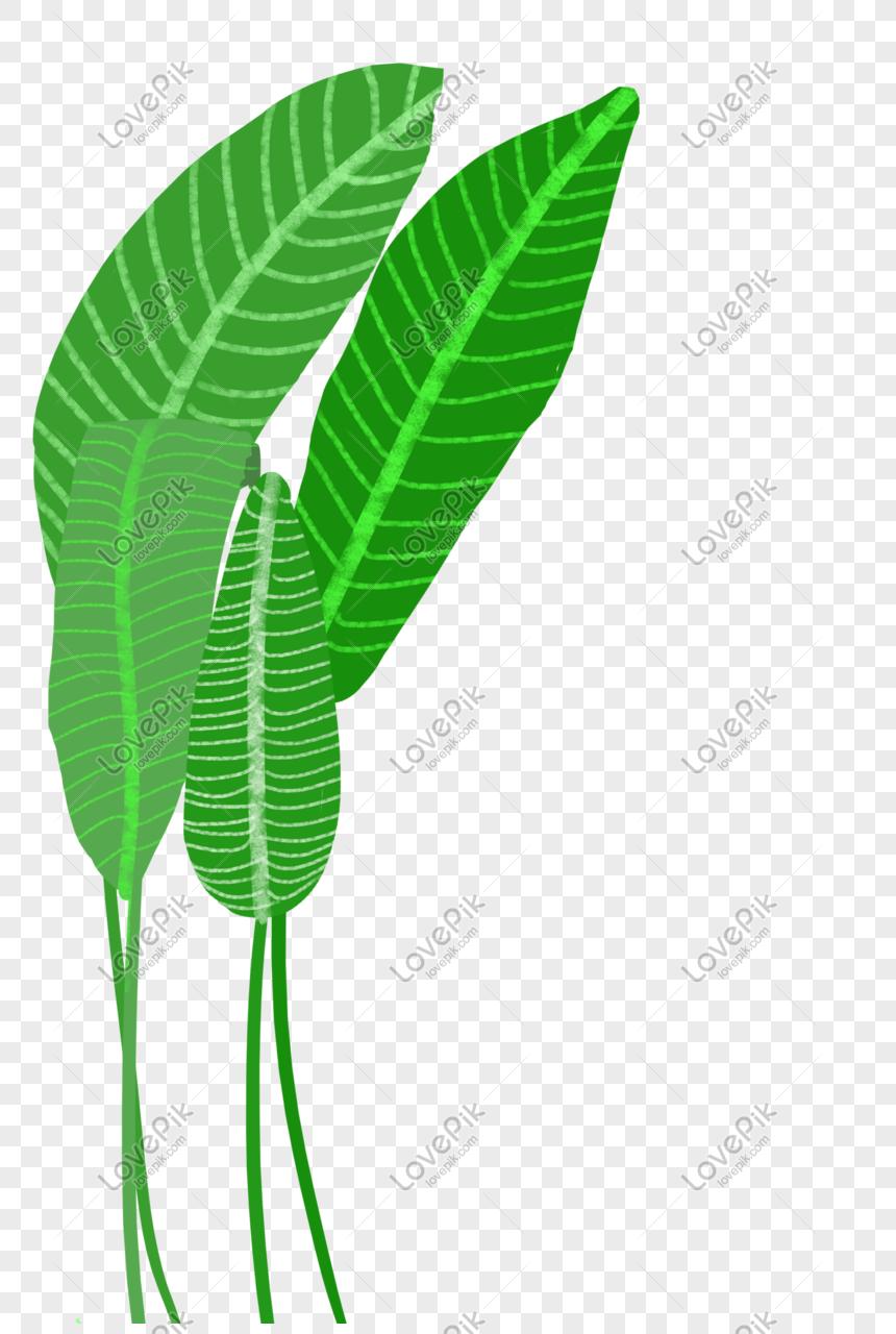 Gambar Lukisan Pokok Pisang