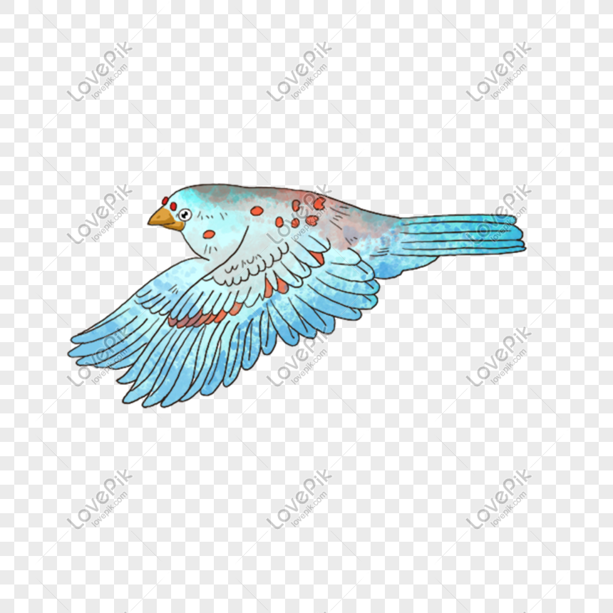 Flying bird png image_picture free download 401166968_lovepik com