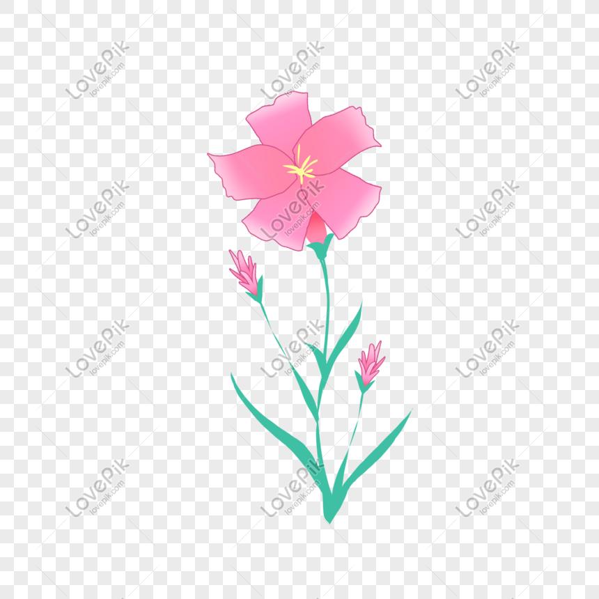 Gambar Tangan Anyelir Kartun Ibu Hari Dan Petak Bunga Png Grafik