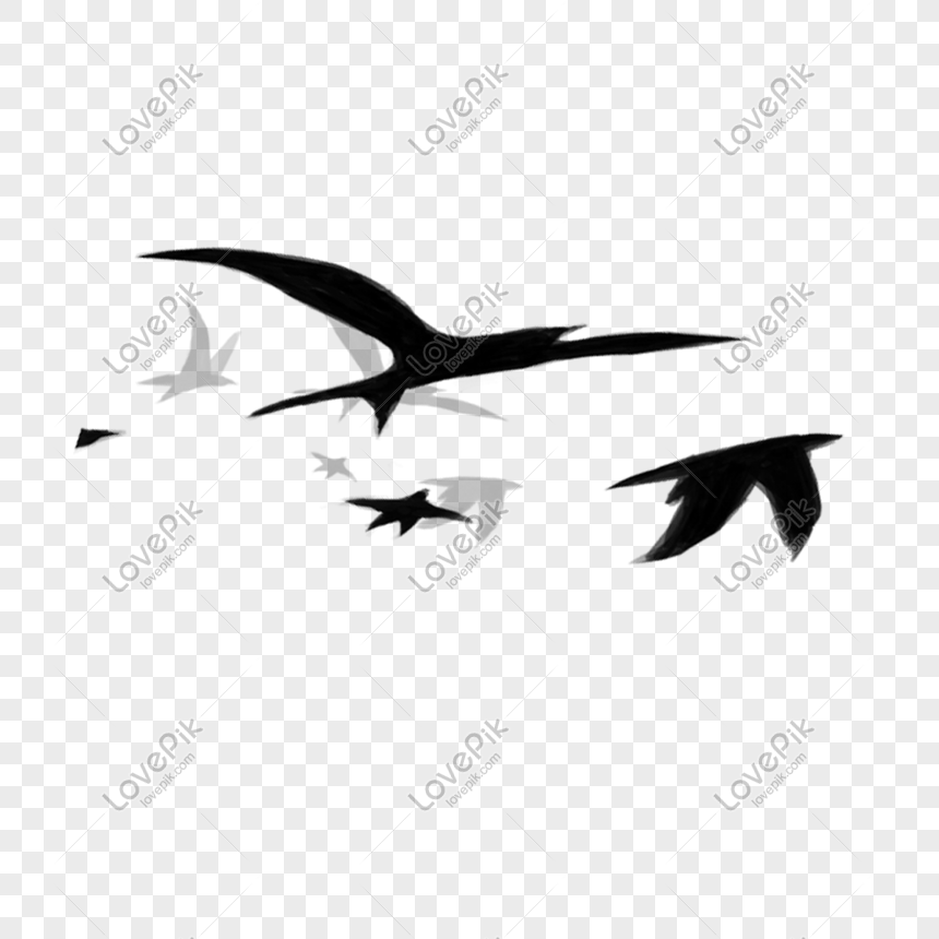 Flying Birds Png Image Picture Free Download 401178623 Lovepik Com