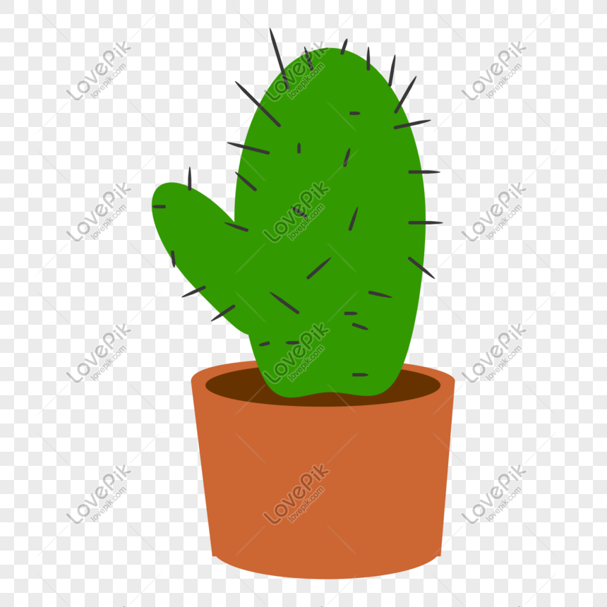 green cactus plant potted png