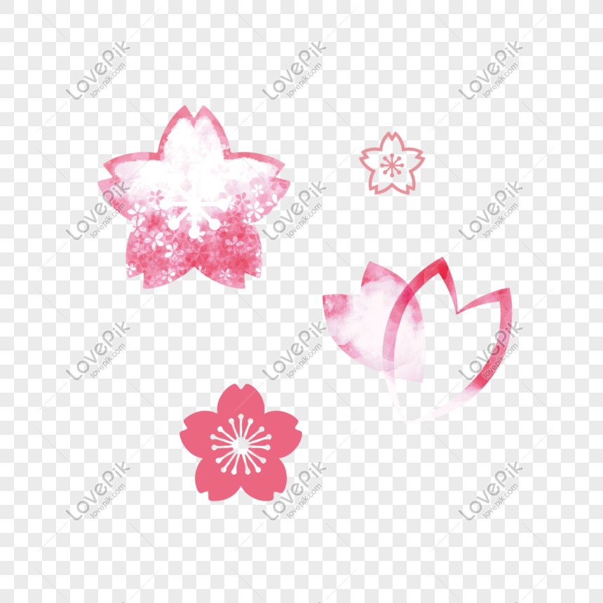 cherry blossom element png