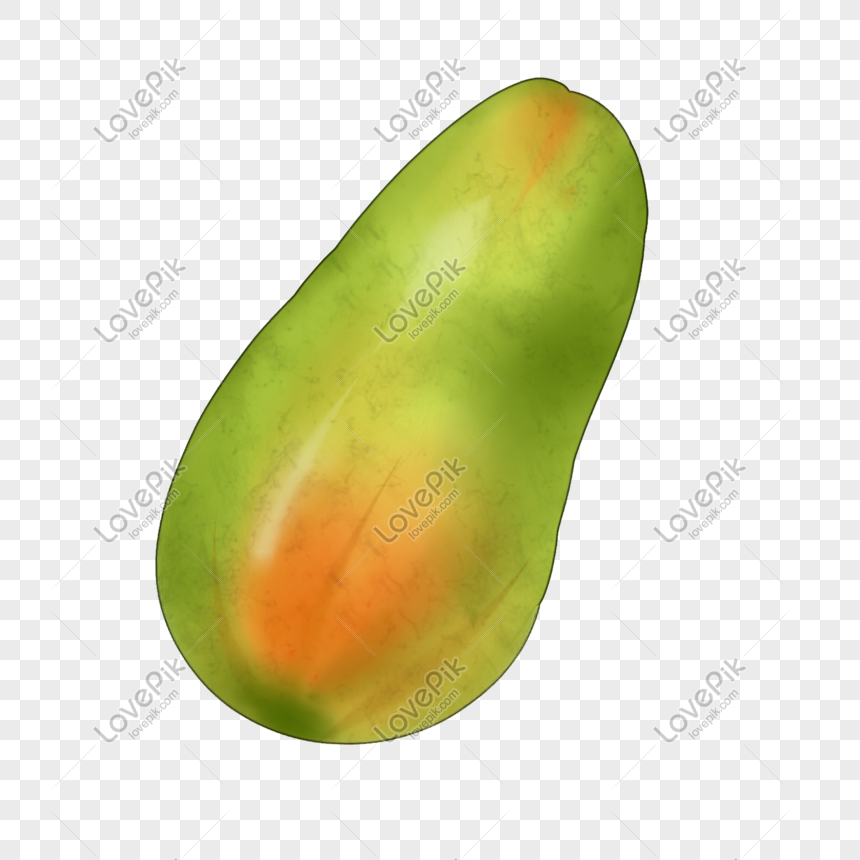 a papaya png image picture free download 401232414 lovepik com lovepik