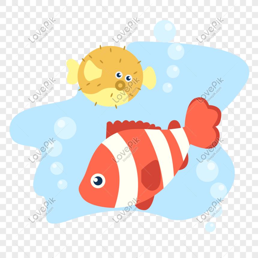 Unduh 9300 Download Gambar Ikan Buntal HD Gratis