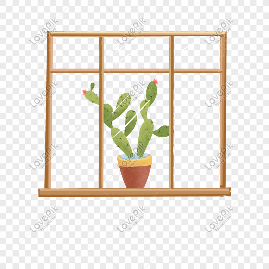 cactus potted plants on the windowsill png