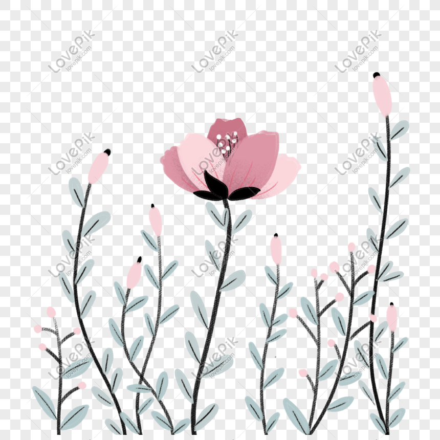 Gambar Kartun Bunga Mekar Gambar Terbaru Hd