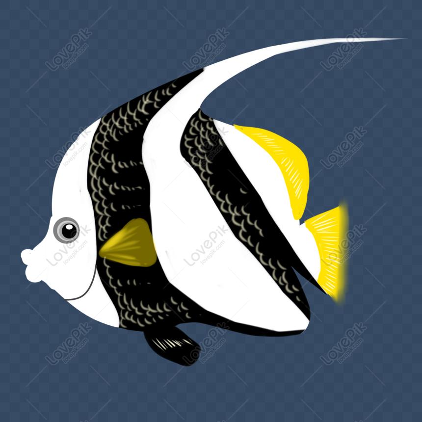 510+ Gambar Hewan Laut Kartun Hitam Putih Terbaik