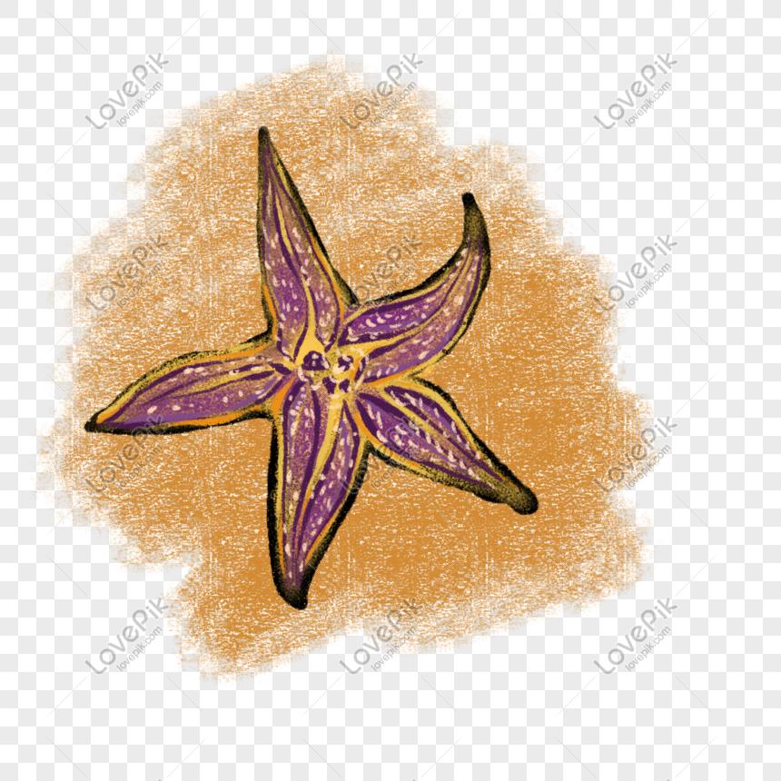 cartoon purple five petal flower illustration png