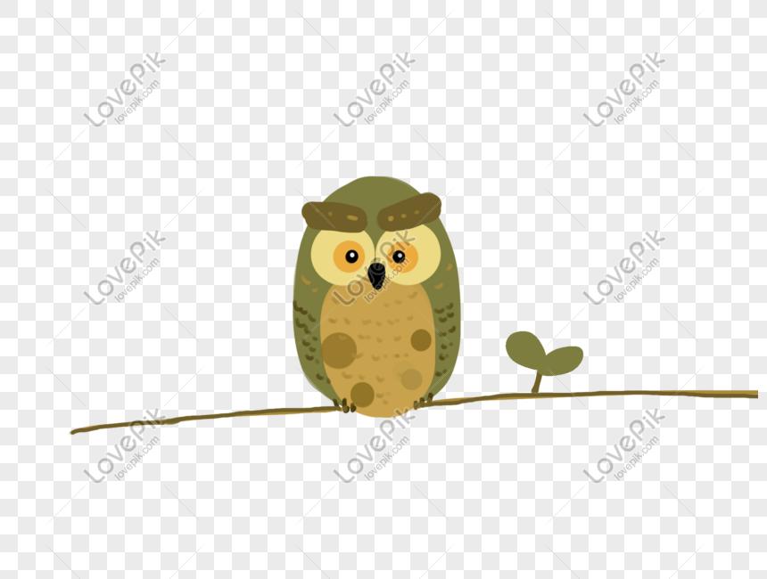 Burung Hantu Gambar Unduh Gratis Grafik 401301770 Format Gambar