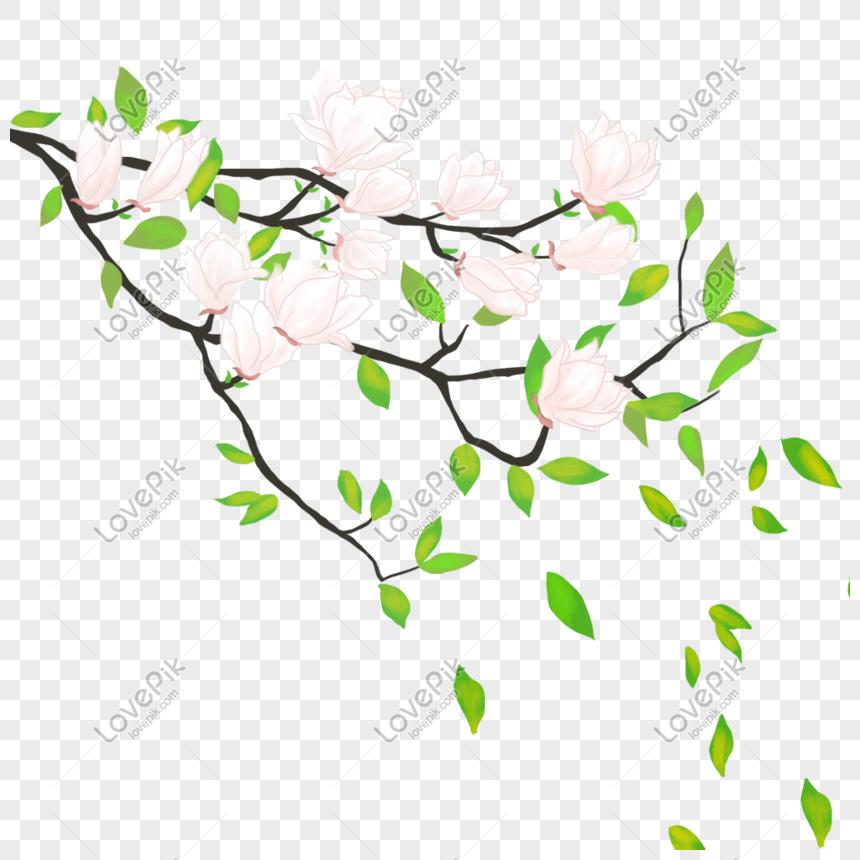 92 Gambar Arsir Bunga Sakura Paling Hist