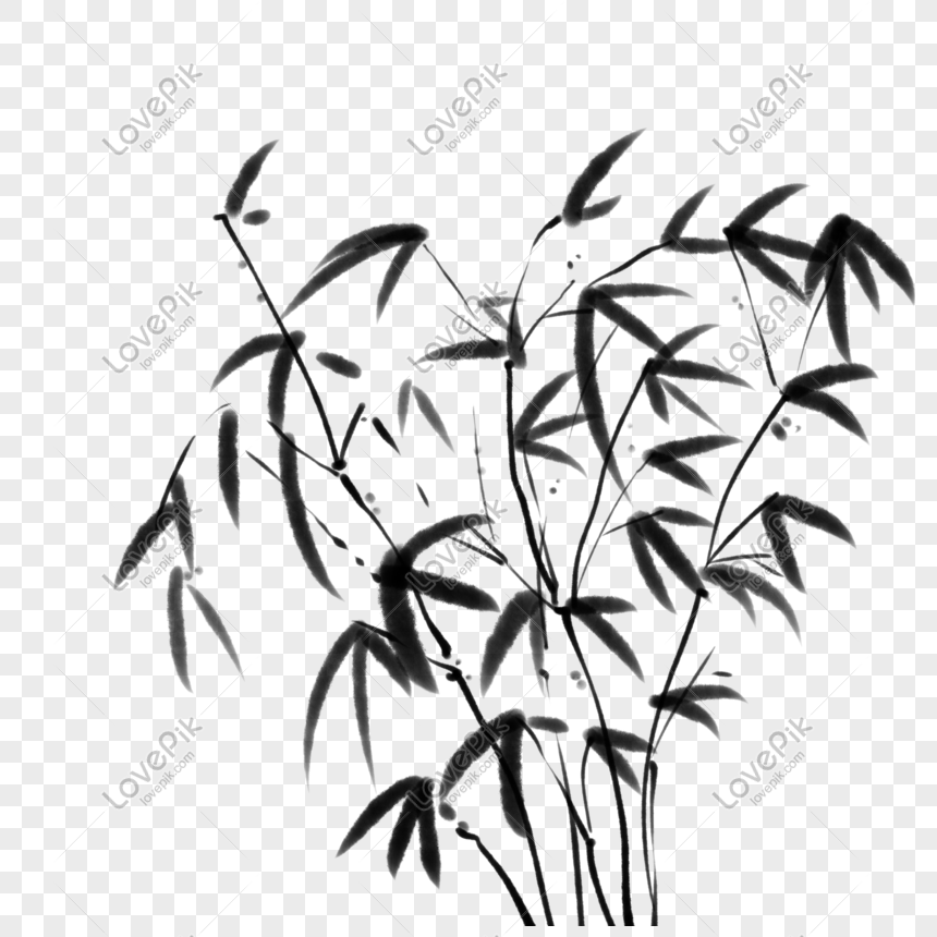 bambu hitam dan putih png grafik gambar unduh gratis lovepik bambu hitam dan putih png grafik gambar