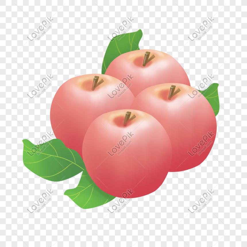 buah apel png grafik gambar unduh gratis lovepik buah apel png grafik gambar unduh