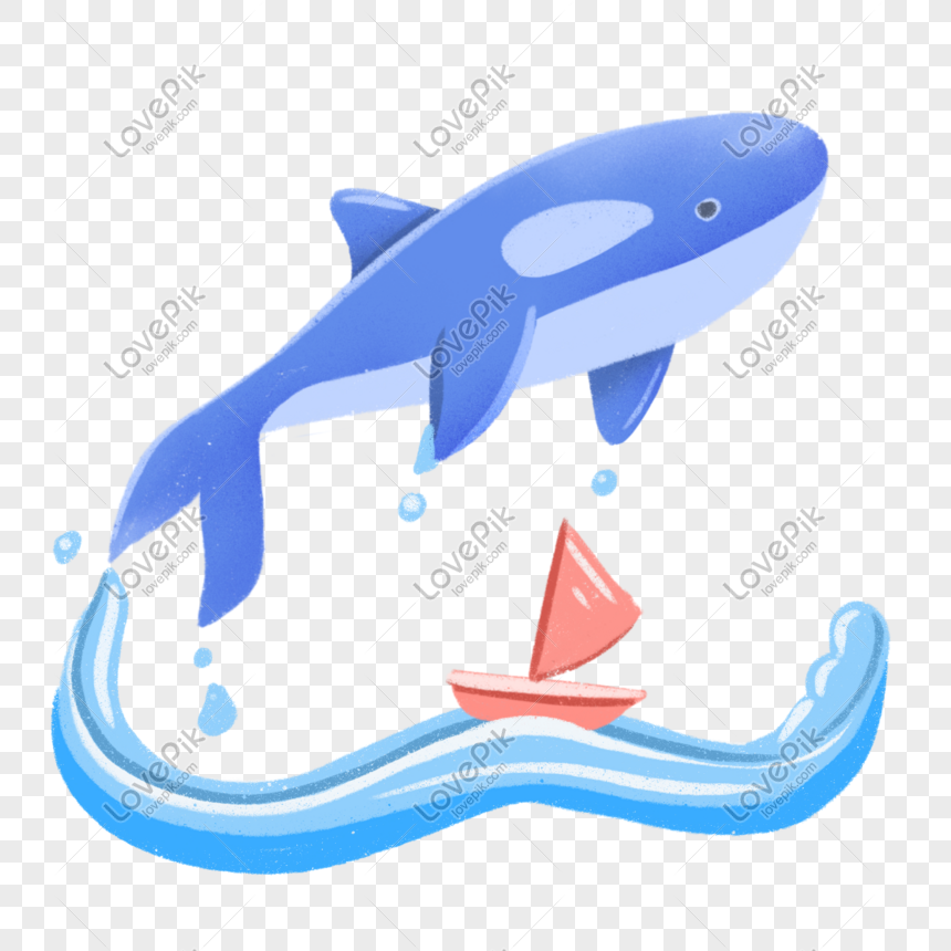 world ocean day whale png