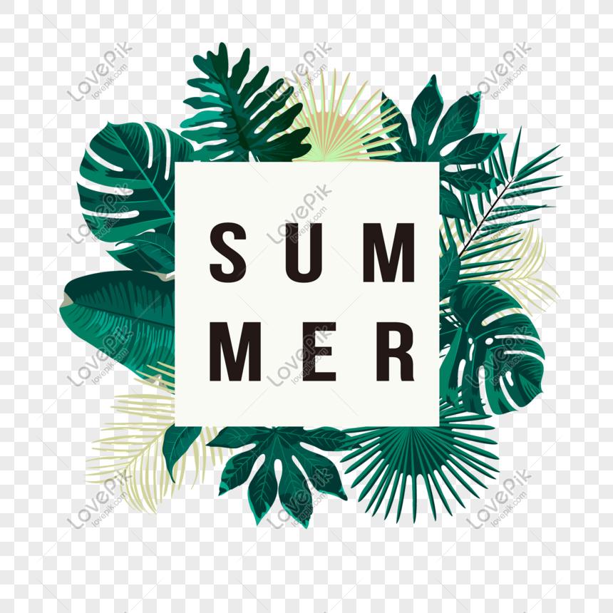 elementos de verão verão png