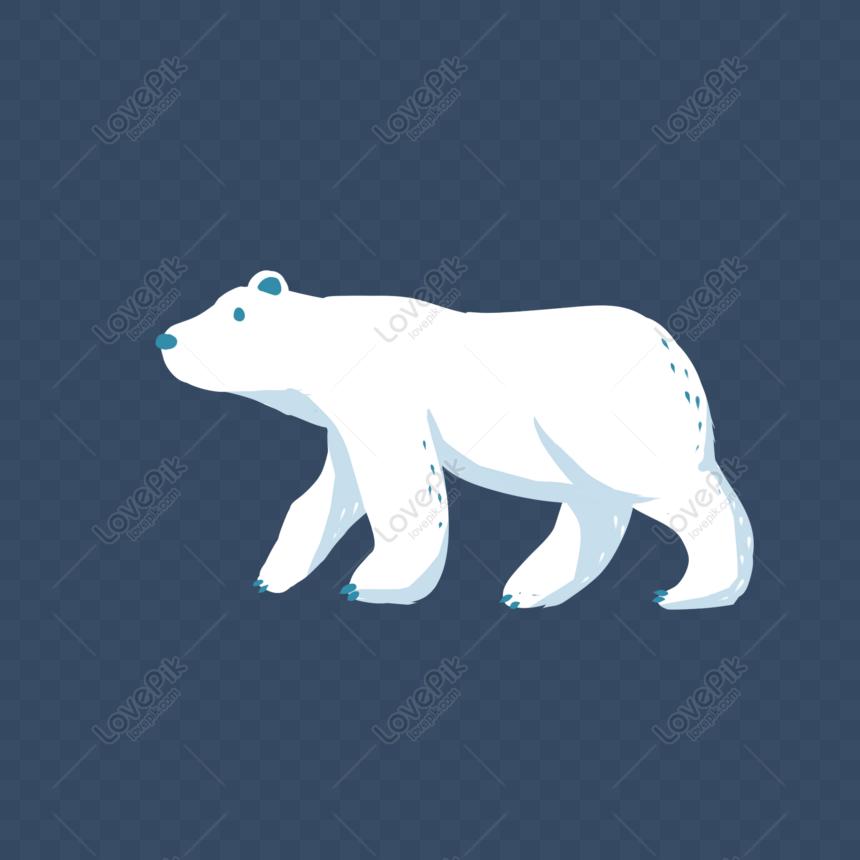 6600 Download Gambar Hewan Beruang Kutub Terbaru