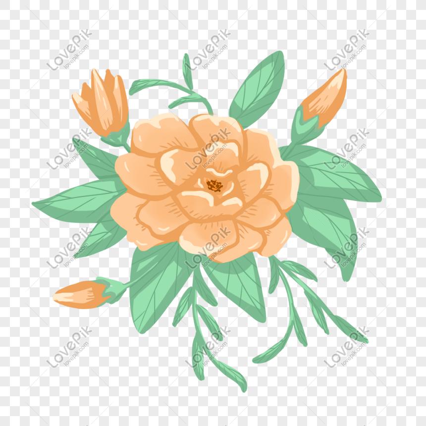 Bunga Melati Yang Dilukis Dengan Tangan Png Grafik Gambar Unduh Gratis Lovepik
