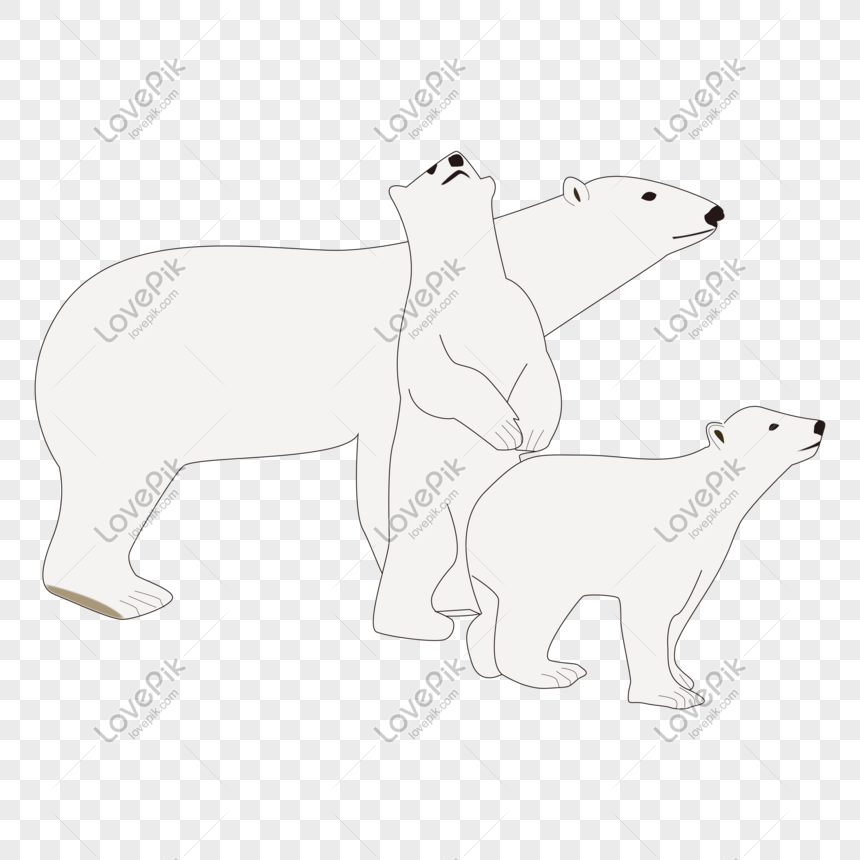 Cartoon Hand Drawn Cute Animal Polar Bear Mom And Child Png