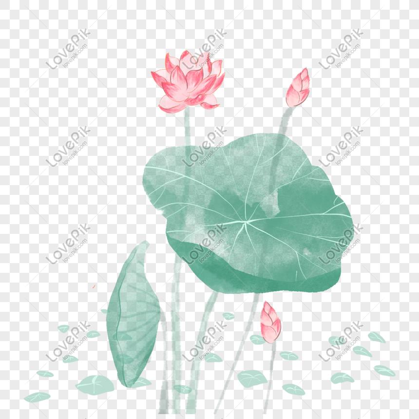 lotus leaf png