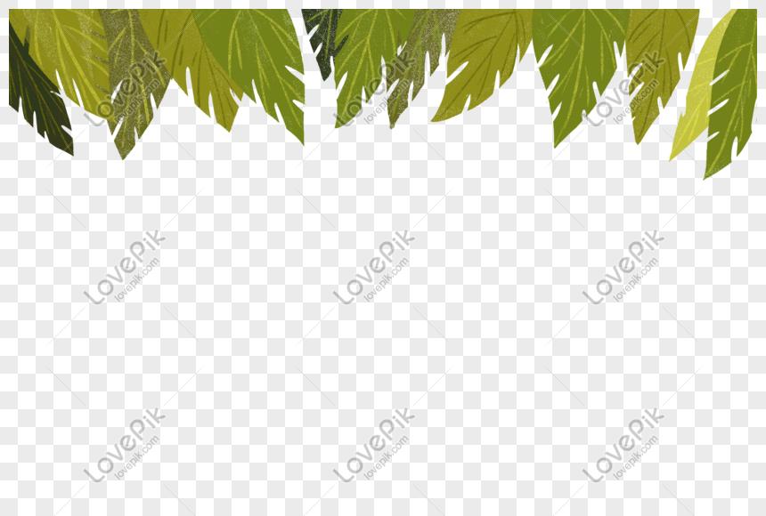 ورق شجر للتصميم Png