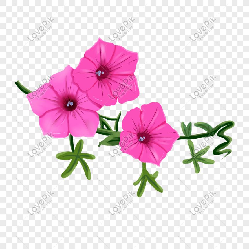Elemen Bunga Melati Ungu Yang Digambar Tangan Png Grafik Gambar Unduh Gratis Lovepik