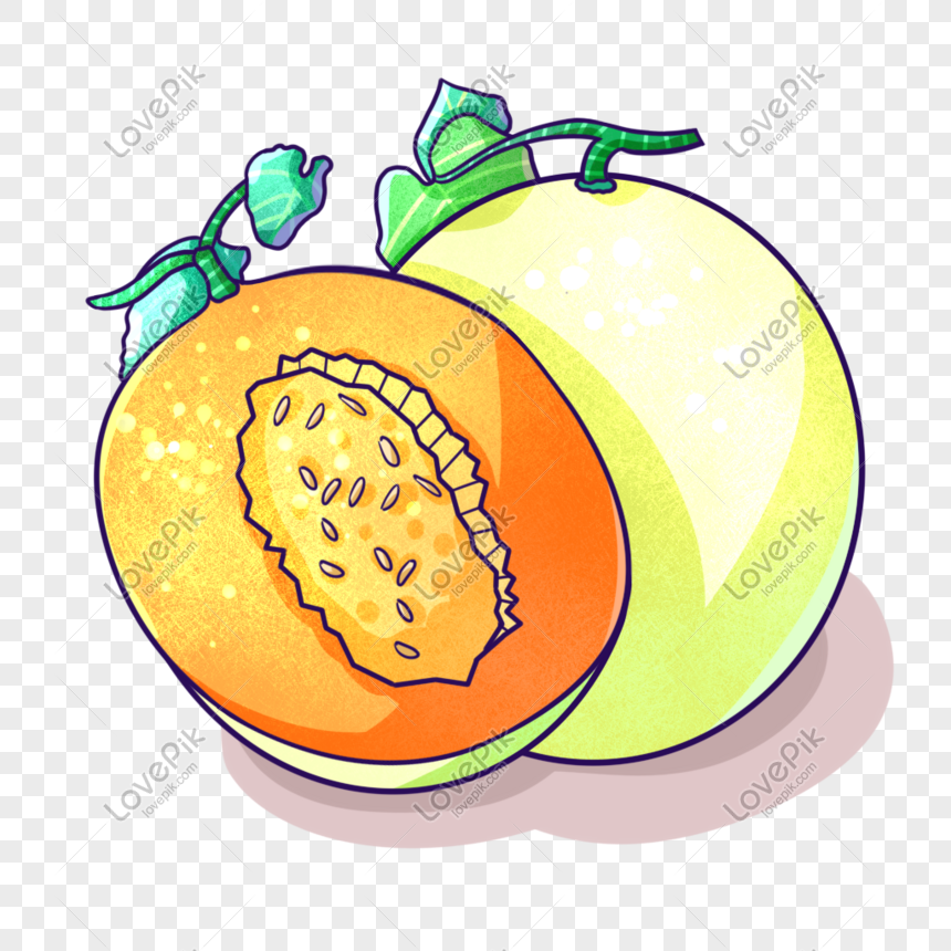 Cartoon Yellow Cantaloupe Illustration Png Image Picture Free Download 401402385 Lovepik Com Cartoon saloon is an irish animation film and television studio based in kilkenny which provides illustration, design, film and tv services. cartoon yellow cantaloupe illustration