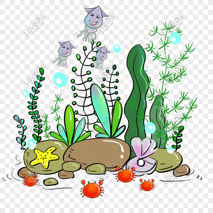 Kartun Air Rumput Laut Kehidupan Png Bahan Percuma Gambar Unduh