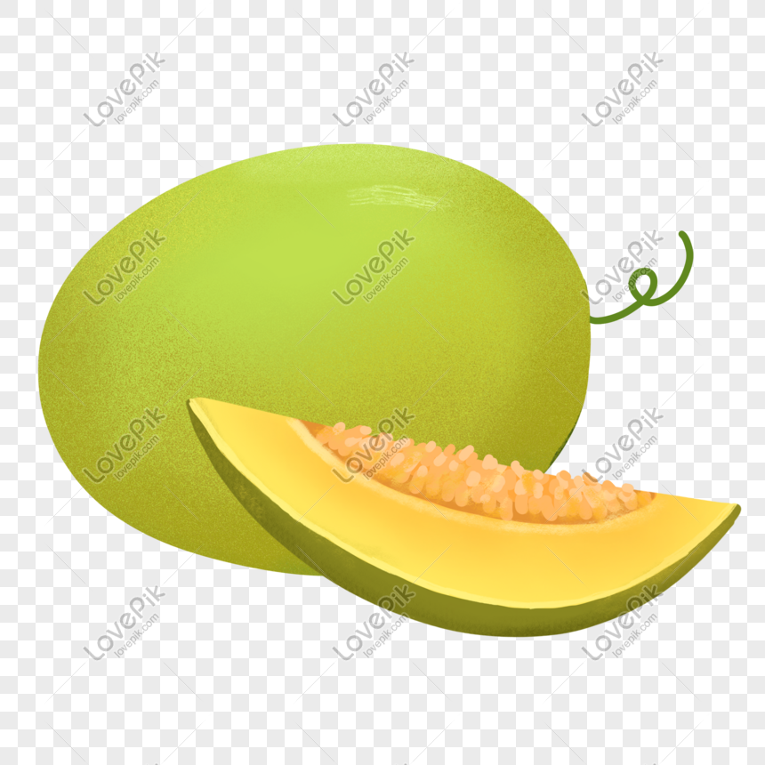 Hand Painted Fruit Cantaloupe Png Image Picture Free Download 401409381 Lovepik Com When you combine cantaloupe with a bit of sugar and vanilla, it ends up tasting like the best and most exotic creamsicle. lovepik