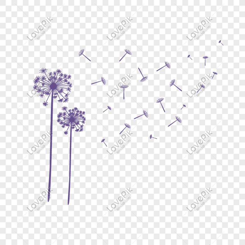 purple dandelion floating decoration material png
