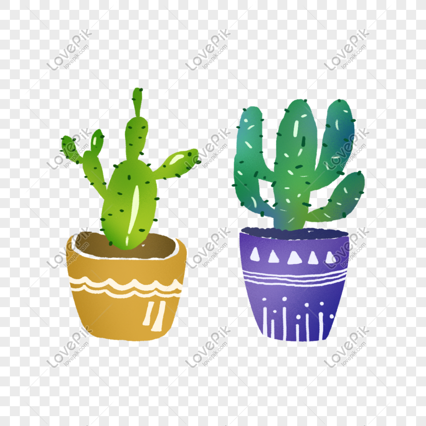 life cactus potted plant png