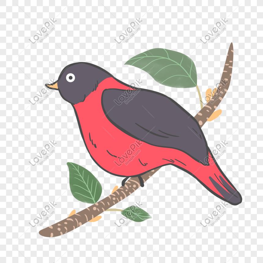 450 Koleksi Gambar Kartun Binatang Burung Terbaru