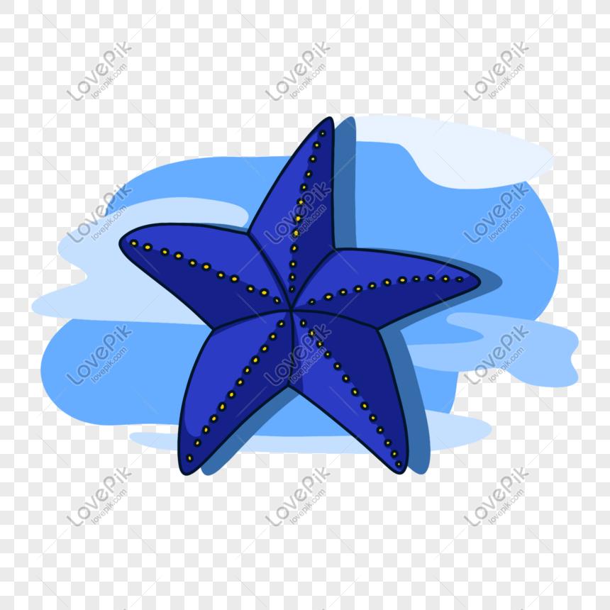 Kartun Bintang Laut Biru Png Grafik Gambar Unduh Gratis Lovepik