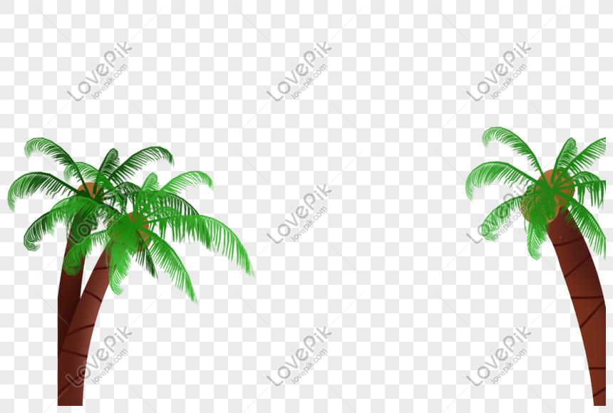 Pohon Kelapa Gambar Unduh Gratis Grafik 401471095format