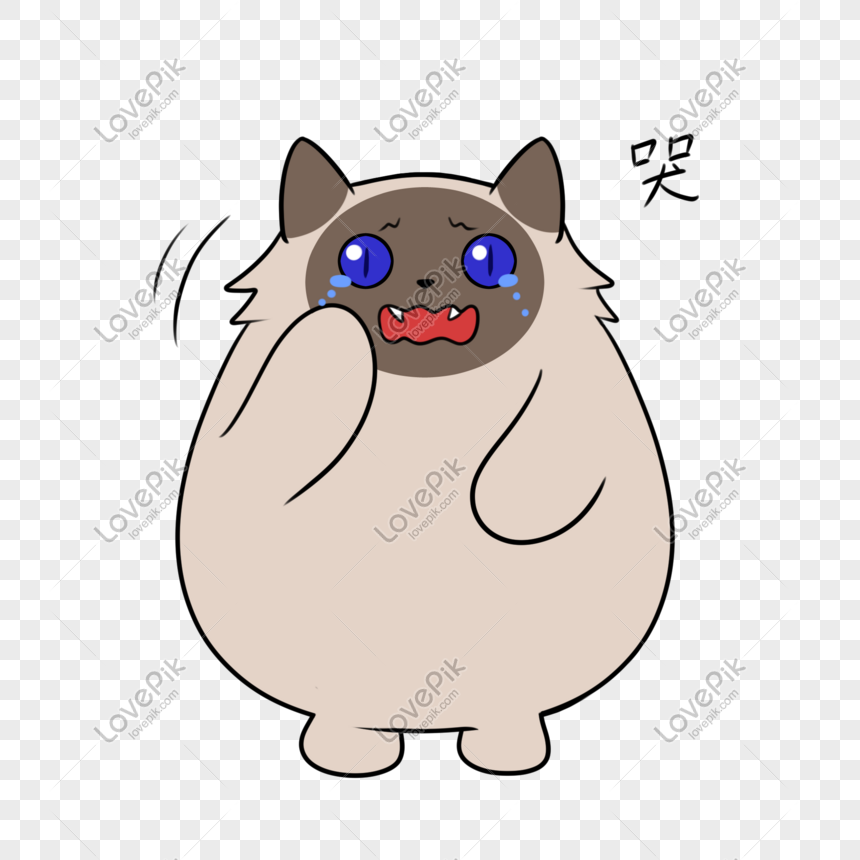 Download 67+  Gambar Kucing Sedih Dan Menangis Paling Keren HD